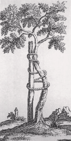 Nicolas Andry Orthopädenbaum