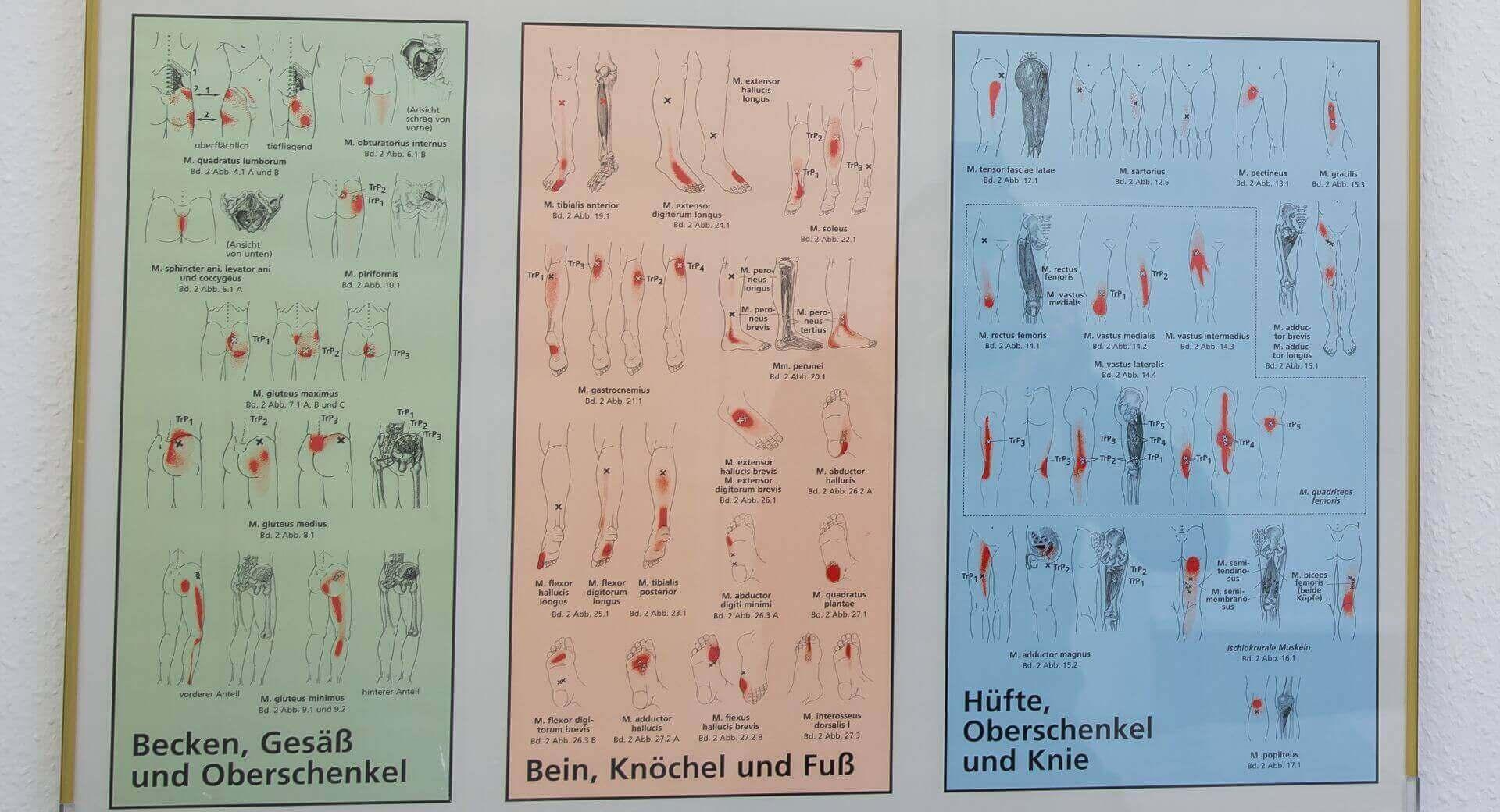 Zahlreiche Verletzungen behandlet in Bonn Orthopäde Wingenfeld